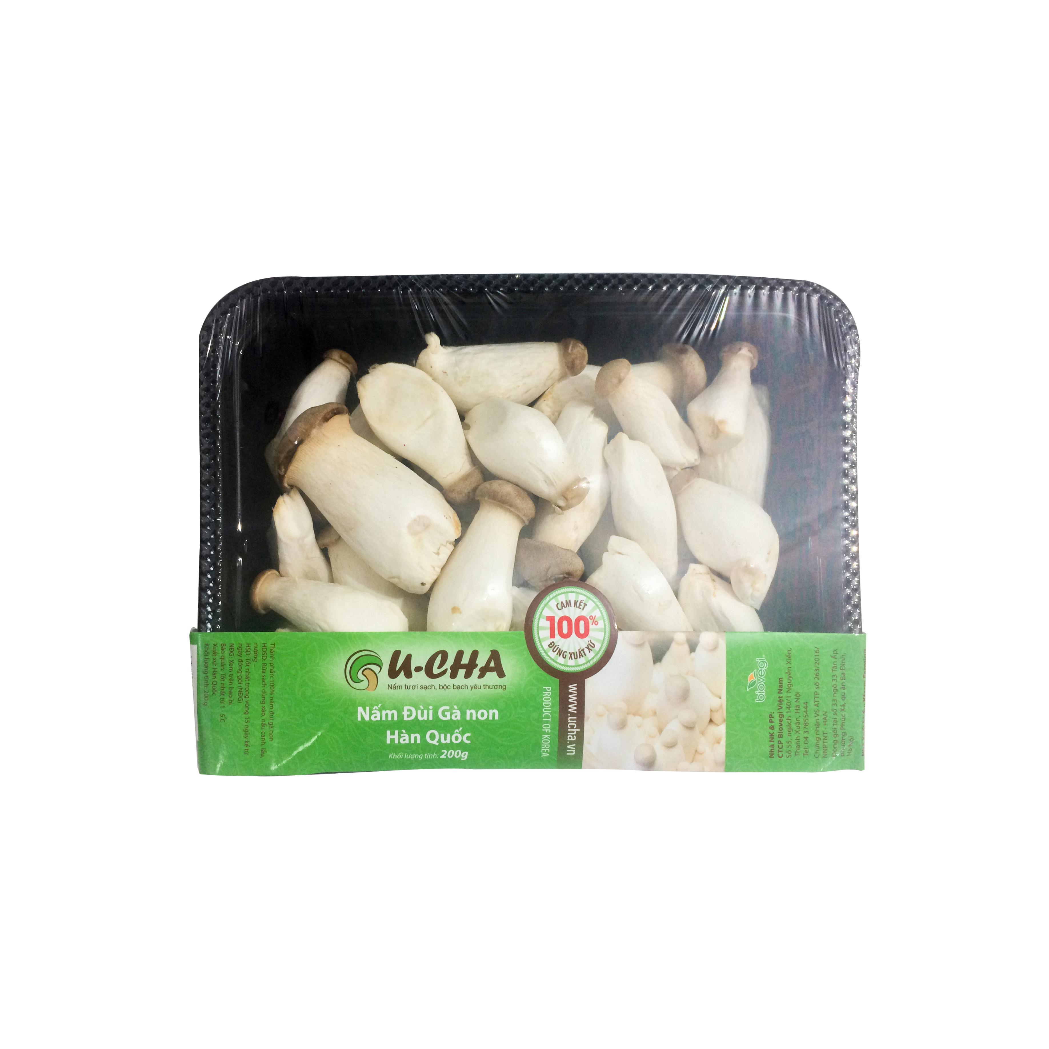 Baby King oyster mushroom Korea